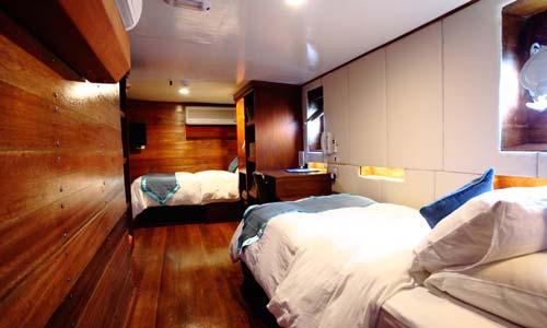 Solitude One Quad Cabin