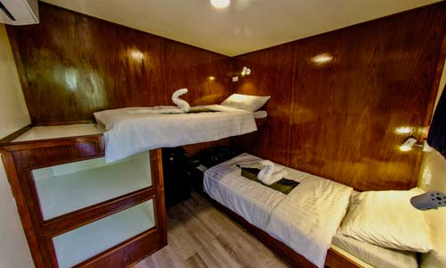 Smiling Seahorse Standard Twin Bed Cabin